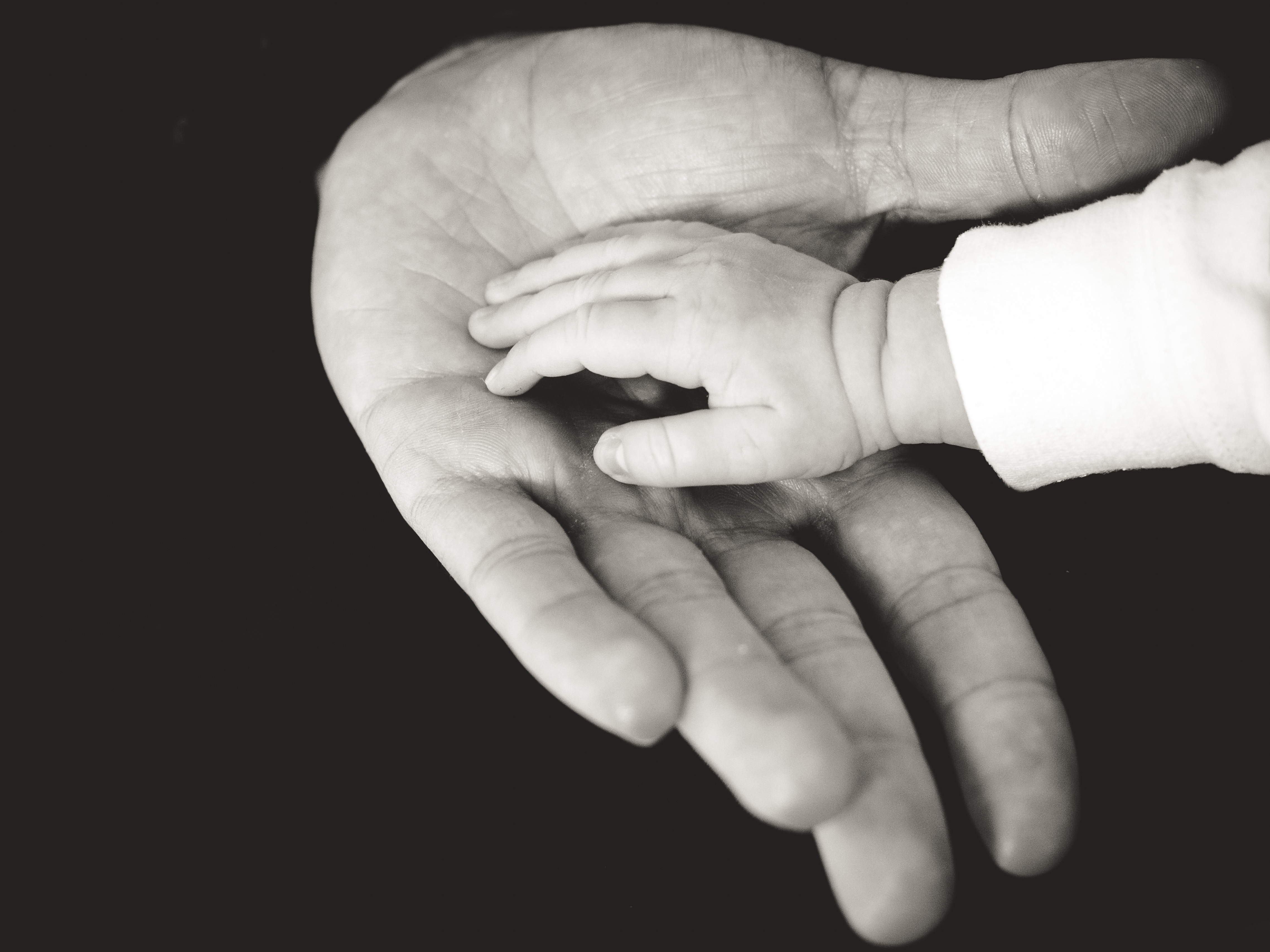 father and son's hands